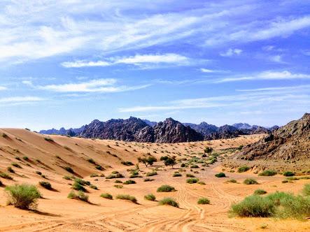 Deserto do Egito. (Foto: Rabah al-Shammary / Unsplash)