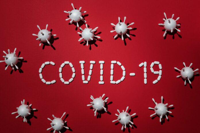Covid-19 (foto por Edward Jenner on Pexels.com