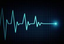 Batimento cardíaco (foto: ilustração)